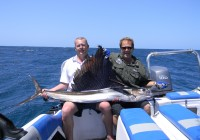 Winter Sailfish Adventures